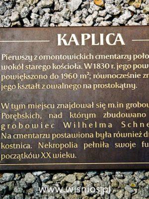 tablica-pamiatkowa-braz-memorial-plaque-odlew-wiśnios-ornontowice-park-Michała-archanioła-5